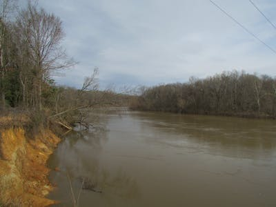 Long Bluff Tract