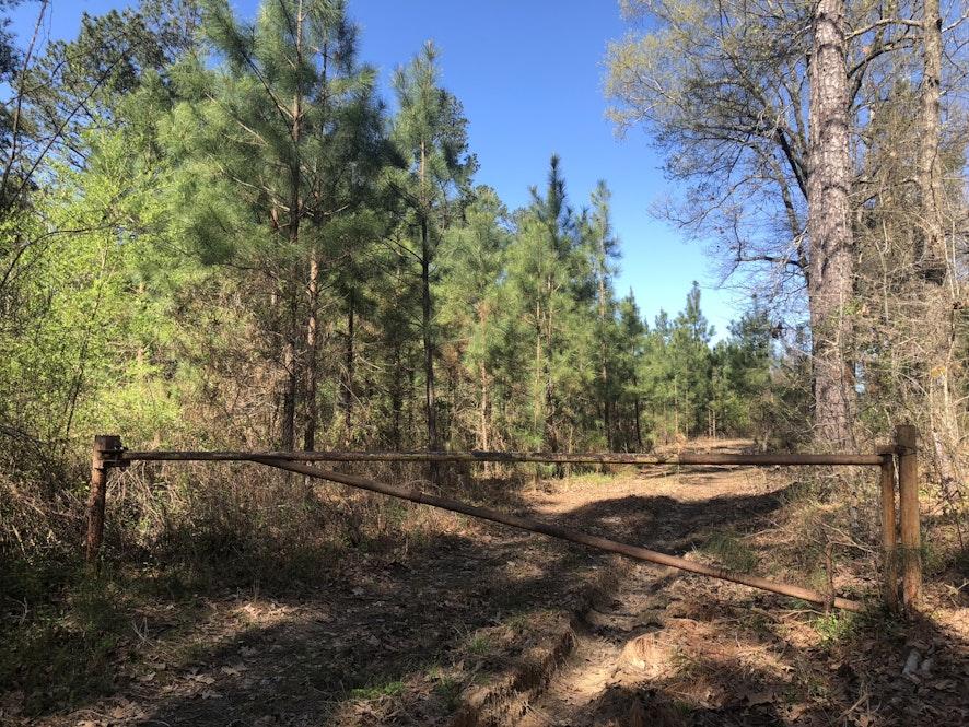 Anson County, North Carolina, ,Land,Active,1024
