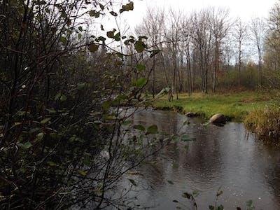 Deer River 80 - Bradley Rd