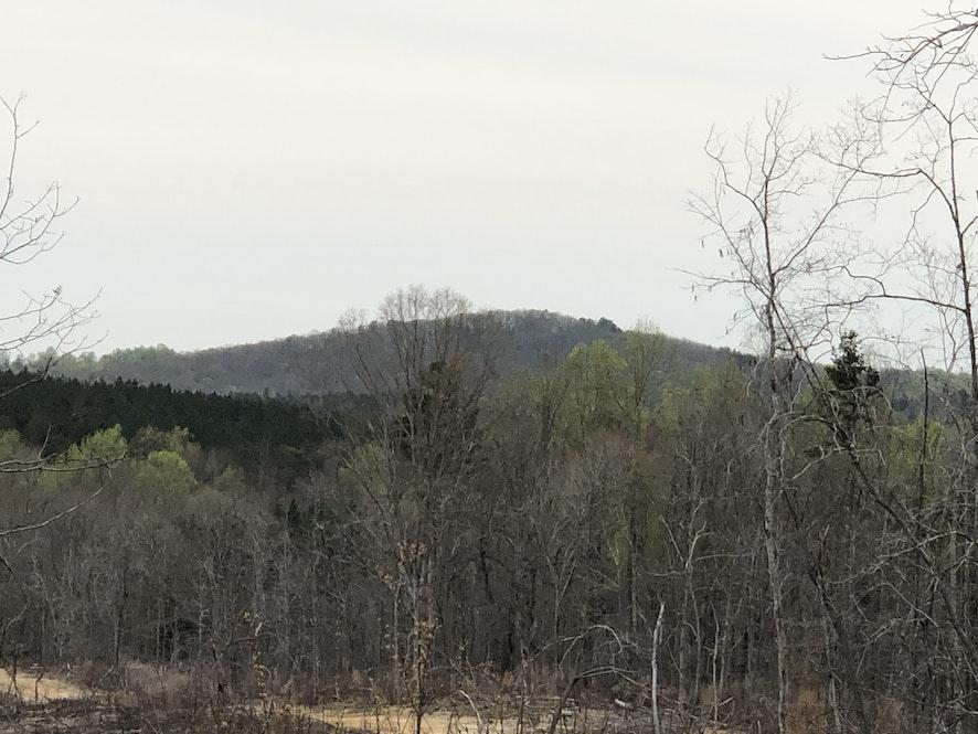 Cherokee County, South Carolina, ,Land,Active,1017