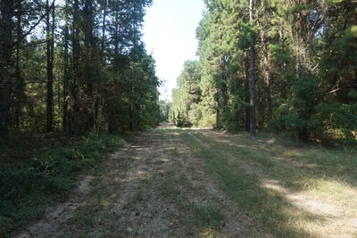 Pedenville Tract