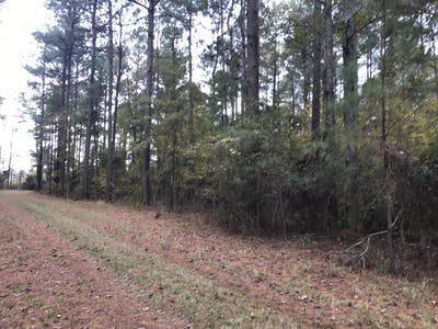 Mims Road Tract