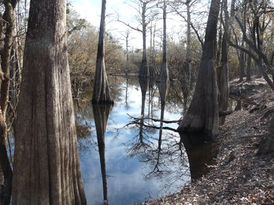 Jeffries Creek