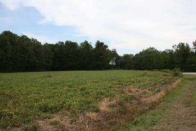 Daniels Family Farm