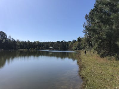 Cedar Creek 60
