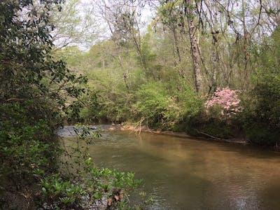 Wacoochee Creek South