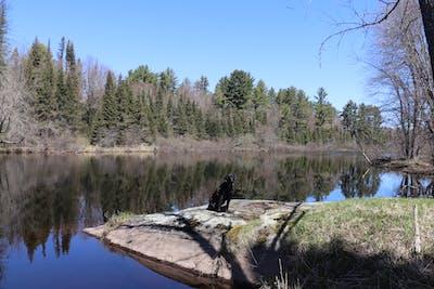 West Paint River