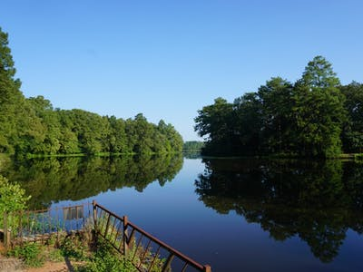 Jordan Mill Pond